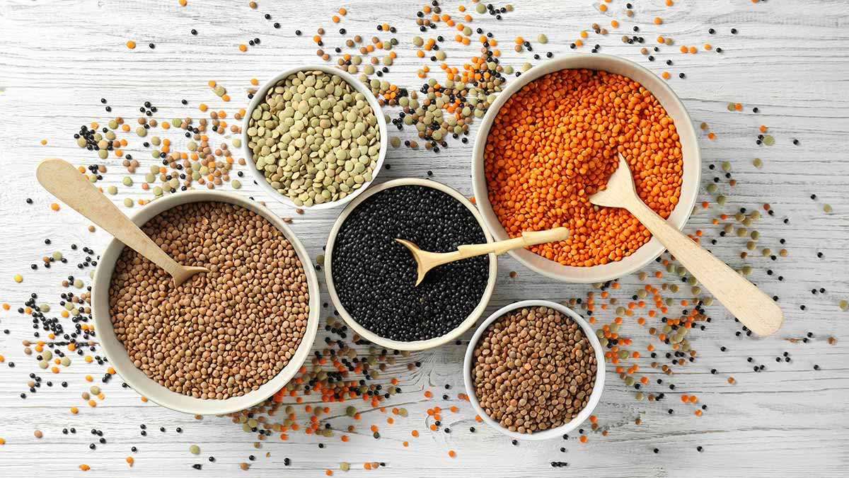 pulses-and-fibre