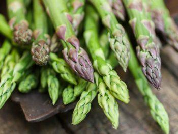 how-asparagus-grows