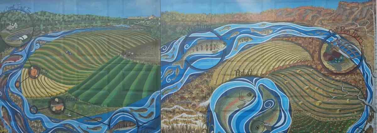 trout-farming-mural