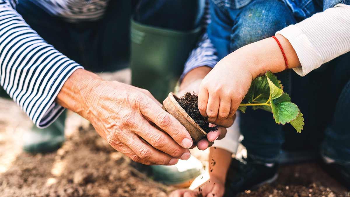 kids-in-the-garden