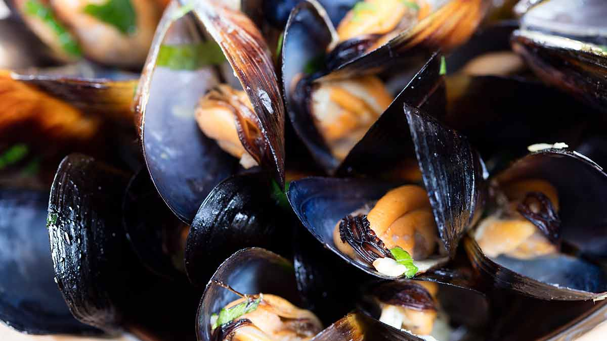 mussels-on-plate