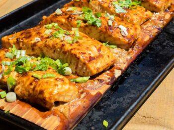 stout-ginger-salmon