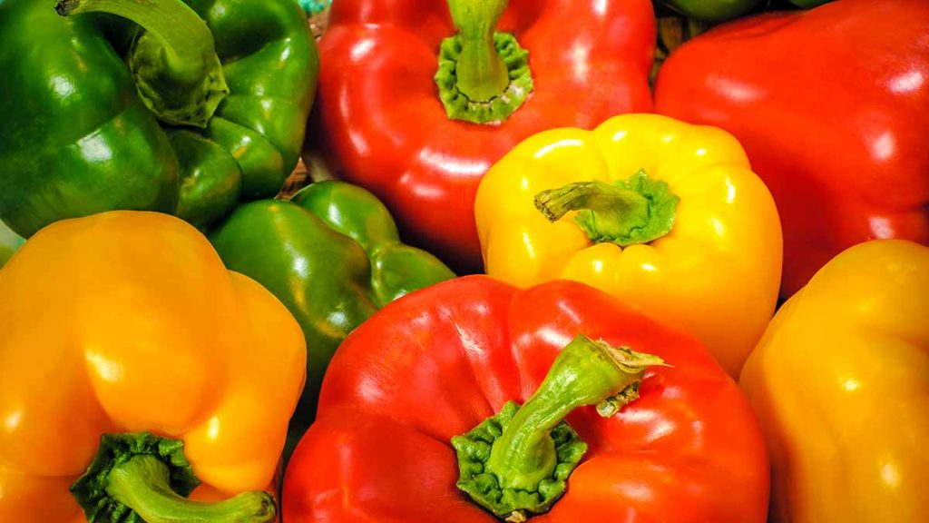 bell peppers multicolor