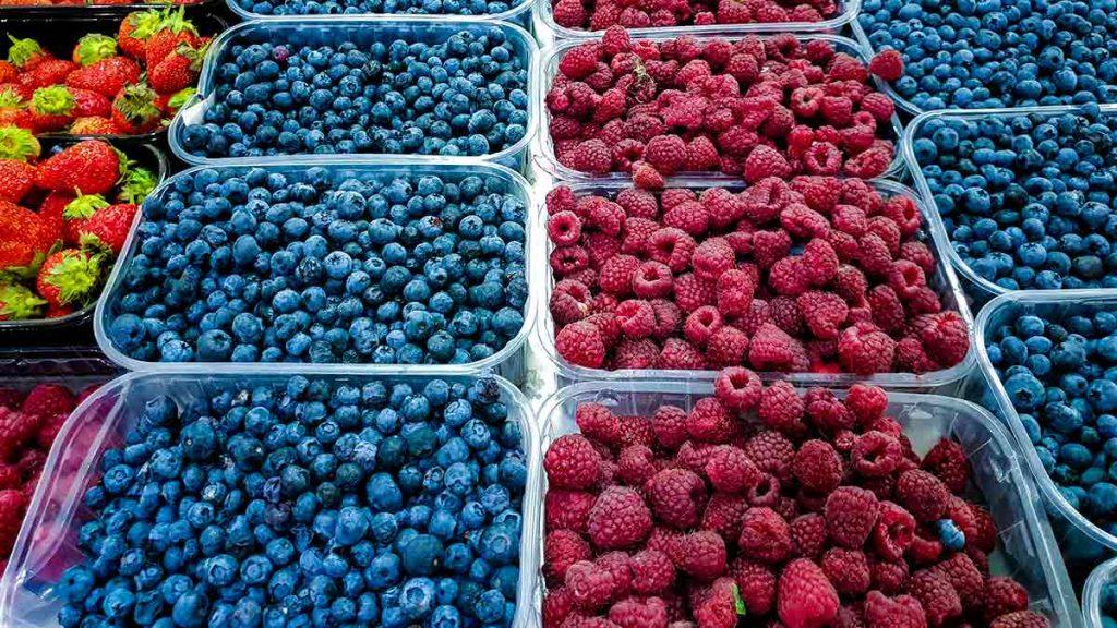 berry trays