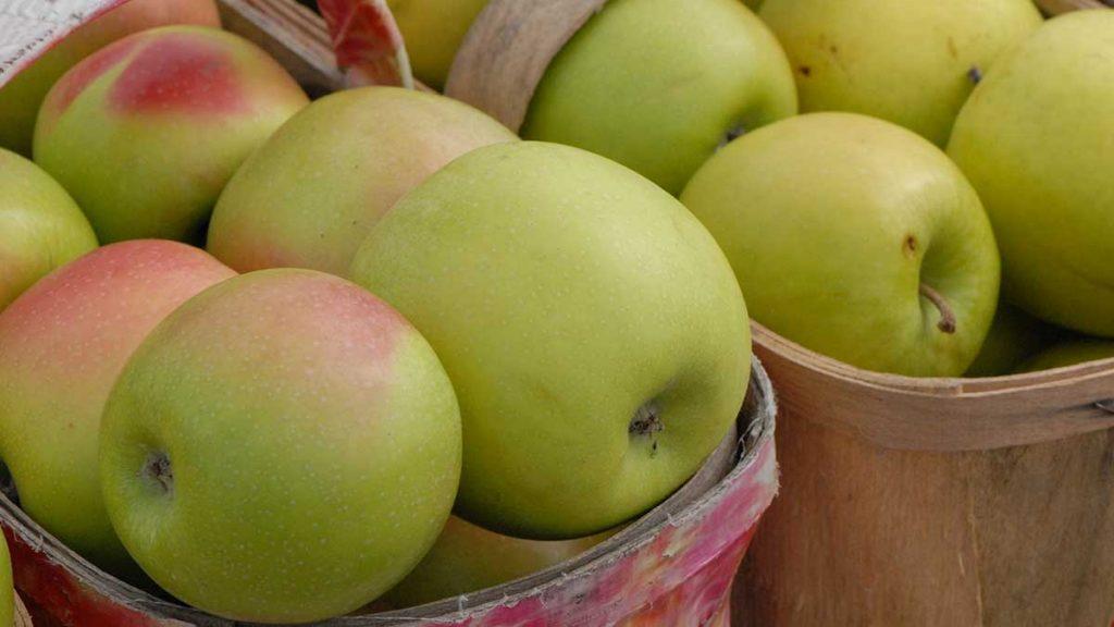 crispin apple