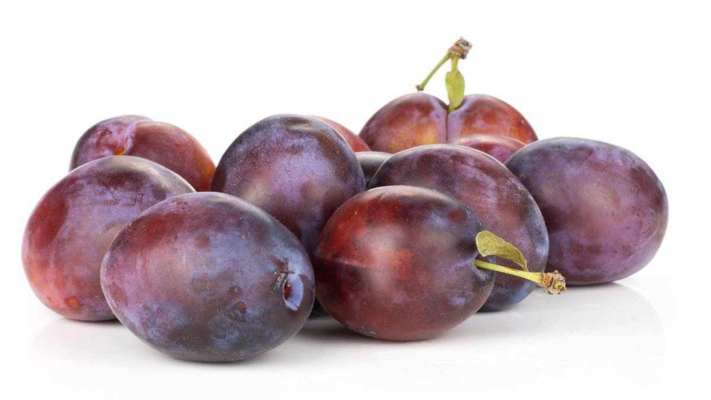 moyer plum