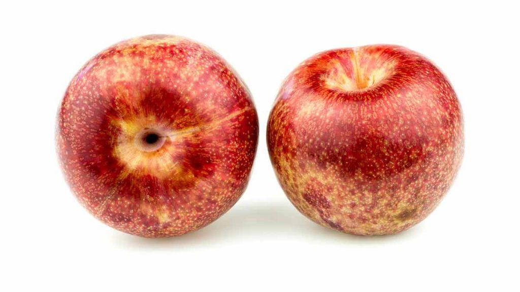 pluot plum