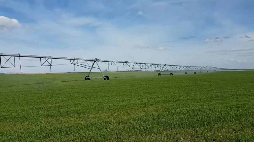 irrigation centre pivot